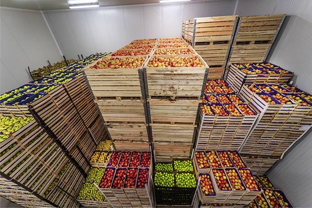 Podemos observar alimentos, uma das classes de mercadorias autorizadas para transporte pela Anvisa.